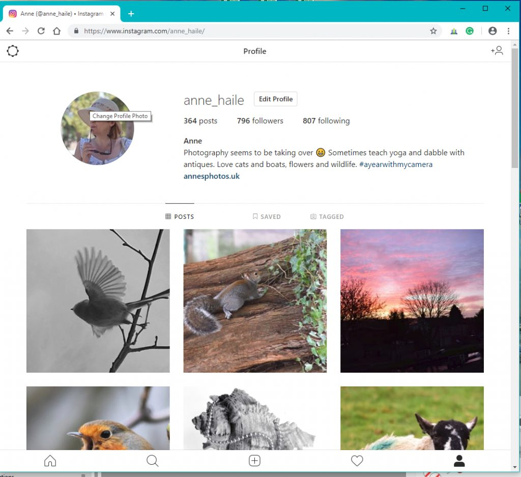 Post to Instagram from your PC - Anne's Photos
